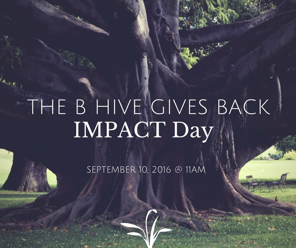 The B Hive Impact Day - September 11, 2016