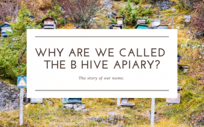 Why are we called The B Hive Apiary?