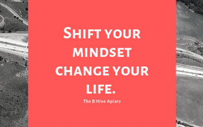 Shift your Mindset - Change your Life
